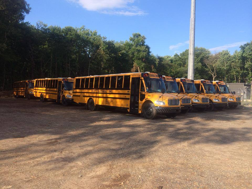 Several rows of buses outside in front of trees.